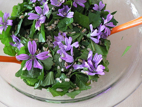 10-05-12-Salade-fleurie-02.JPG