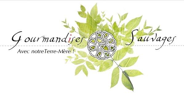 Logo-GS-entier.jpg