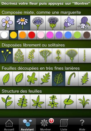 application fleurs en poche