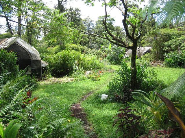 permaculture-quansut-hut-meadow.jpg