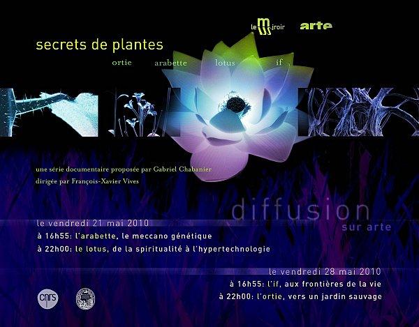 secrets_de-_plantes_diff.jpg