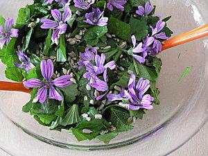 10 05 12 Salade fleurie 02