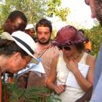 Identification des Plantes Spontanées