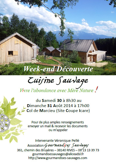 Affiche Stage Cuisine Sauvage Août 2014