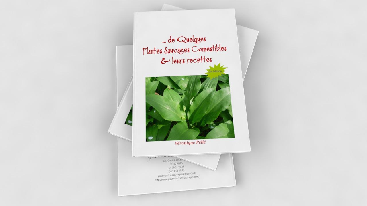 De Quelques Plantes Sauvages Comestibles & leurs recettes