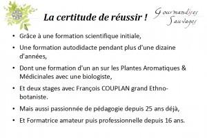 Formation Plantes Sauvages Comestibles en Ligne 111