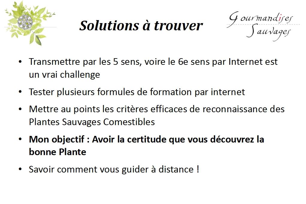 Formation plantes sauvages comestibles en ligne for Plantes par internet