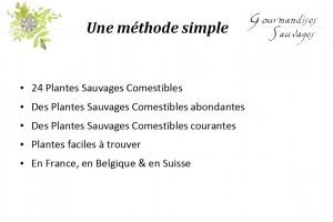 Formation Plantes Sauvages Comestibles en Ligne 215