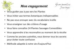 Formation Plantes Sauvages Comestibles en Ligne 216