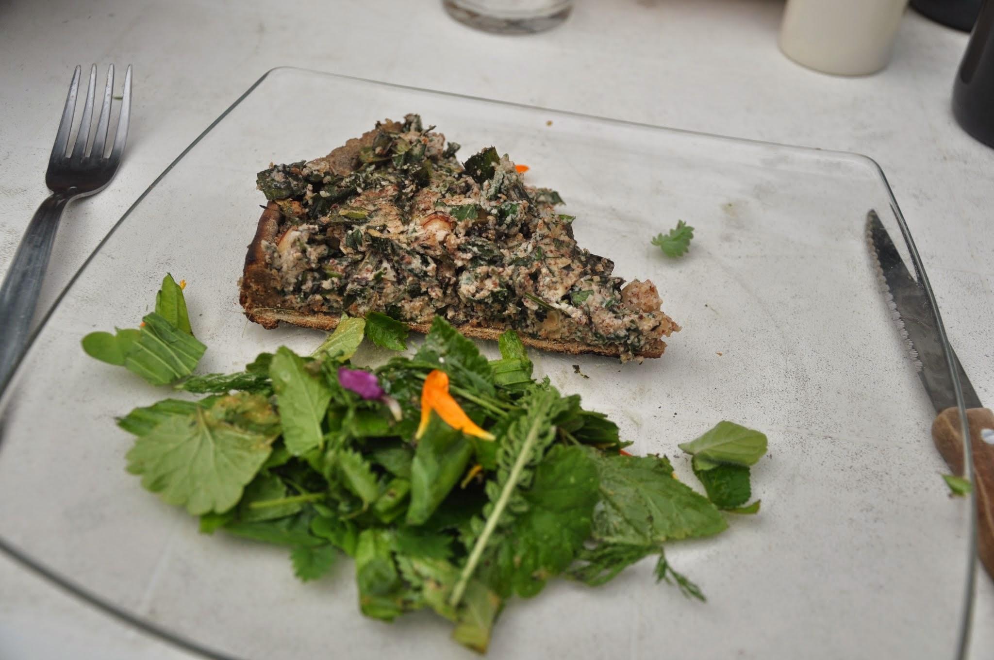 Stage cuisine sauvage - Cuisine plantes sauvages ...