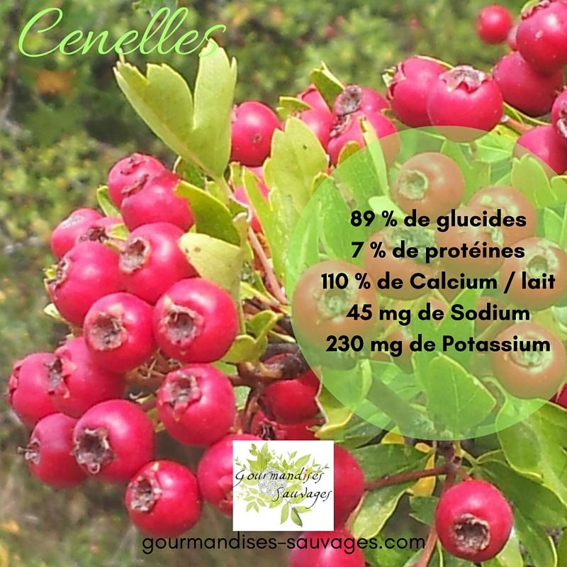 Nutriments Cenelles