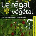 Le regal vegetal